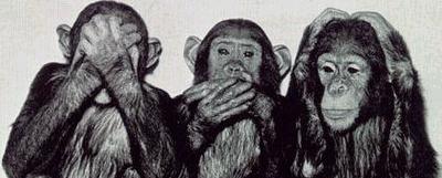 macacos-sabios
